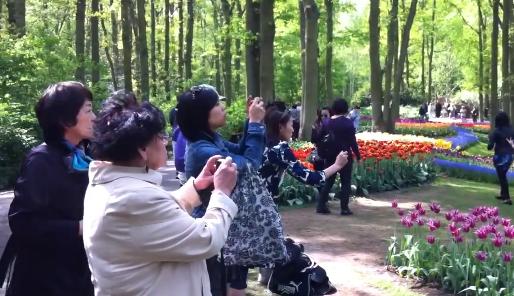 Japanners bij de Keukenhof - Cc Jesse Hoosemans - Screenshot YouTube